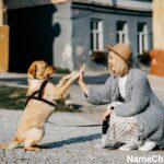 Female Dog Names that Mean Survivor